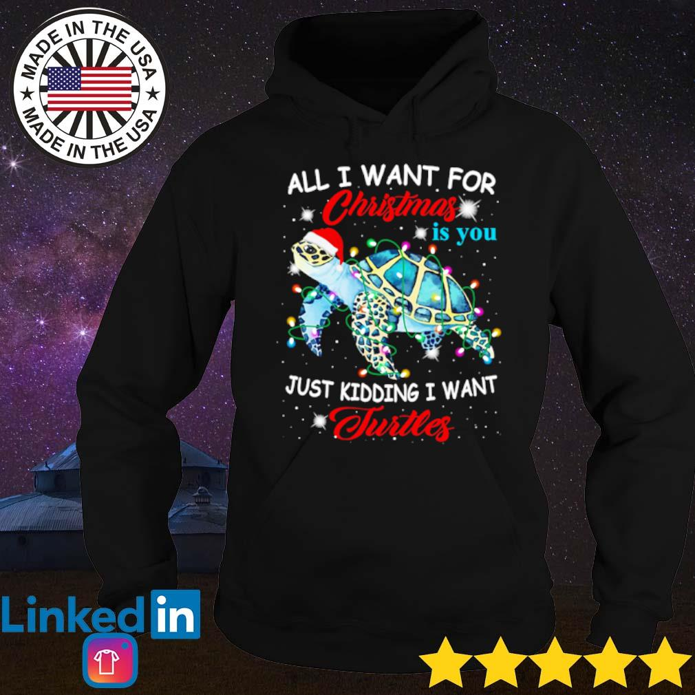 All I want for Christmas is you just kidding I want turtles s Hoodie